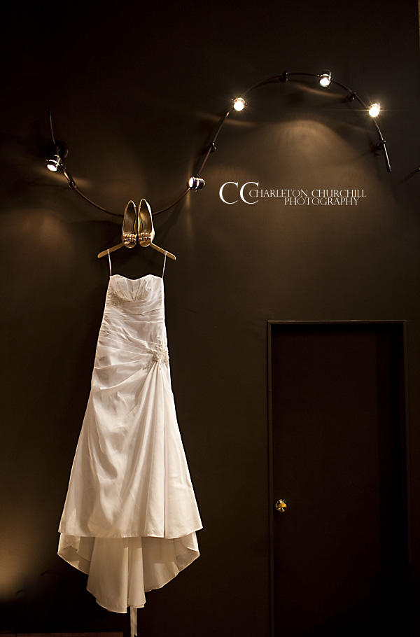 wedding dress in Kansas city, MO. for Andrew and Natasha