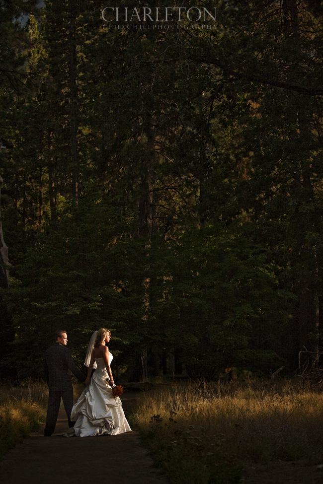 Ahwahnee Yosemite Wedding picture