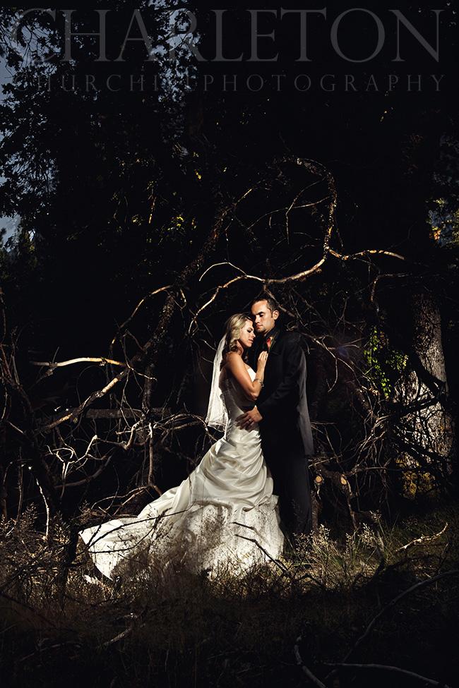 Yosemite Ahwahnee Wedding photographer