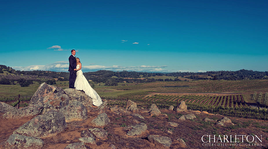 Helwig Winery wedding Photos