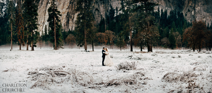 panorama yosemite wedding photos